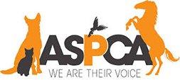 ASPCA Helping to End Animal Cruelty